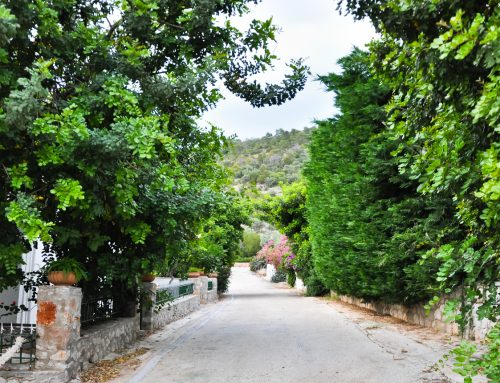 Βόλτα Στο Χωριό